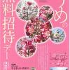 2月6日は大和文華館にて「うめの無料招待デー」が実施されます