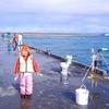イワシを釣りに苫小牧東港へ行ったが散々な結果に・・・