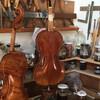 2016年秋弦楽器ヨーロッパ買付レポート フィレンツェ班 其の2