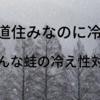 冷え性なのに北海道住みという宇宙トップ不幸蛙🐸のお薦め冷え性対策