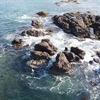 波でかき混ぜられた海の中へ(水中ドローン潜水)