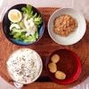 レタスサラダ、小粒納豆。