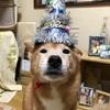 Happy Birthday ガッちゃん🎂