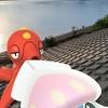 イカと言えばタコなので【ポケモンGOAR写真】マーイーカとオクタンを撮りました