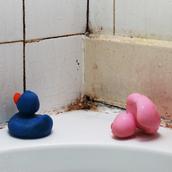 浴室など水回りのカビは予防が大切!梅雨に備える『カビ対策グッズ』