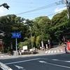 本州NO1の大楠パワーをチャージ!「来宮神社」久しぶりの熱海