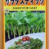 情報が少なすぎる「サラダスティック」の水耕栽培に挑戦。本当にポリポリ食べられるのでしょうか?