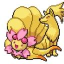 狐桜の花贈り