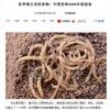 1980年代の糸井重里「中国四千年の味を伝える幻の麺」の予言が的中!