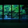 京都の穴場スポット!蓮華寺に行ってきた