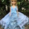 ブルーの豪華なドレス