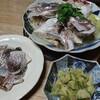 4月の鯛は美味い