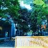 濡れないミストと天然芝のグリーンに癒される   丸の内ストリートパークでリラックス【東京散歩 丸の内仲通り】