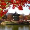 韓国語の「재수 없다」とは?なんて意味?