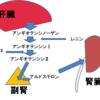 血圧調節・血液循環とその異常・血圧を下げるには?