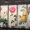 【2017/05 ルドゥーテの「バラ図譜」展 @そごう美術館】