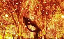 【第15回】仙台の冬は「SENDAI Pageant of Starlight」で楽しもう!