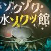 企画展『ゾクゾク水ゾクッ館』(2018.7-12)