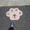 達磨寺① 下を向いて歩こう♪