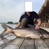 バンコクのブンサムランフィッシングパークで巨大魚を!