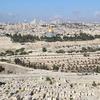 【イスラエル】キリスト教の聖地だから行ってみたかった。イスラエルとパレスチナ自治区(9日間)