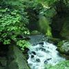 中山川渓谷