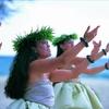 【シコウサクゴ】マイルを貯めてハワイ特典航空券を手に入れる|2017年8月ハワイ路線を1か月調査して分かった直前予約の有効性