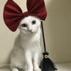 【猫とハロウィン】魔女の宅急便のキキ風に写真を撮ってみました!