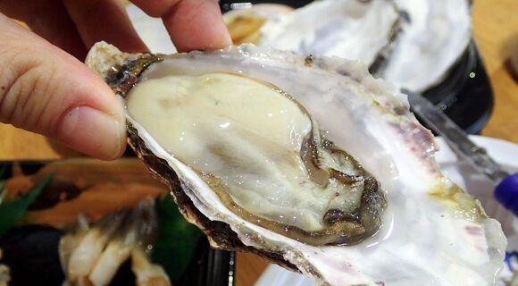 【漁協の直売店】わざわざ連休を使ってでも北海道・厚岸まで旅に行くべき理由とは(特に牡蠣)