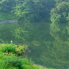 惣の関ため池(宮城県利府)