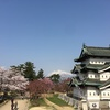弘前の桜と青森市内観光