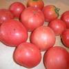 スイカ&トマト