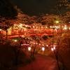 桜雨でより幻想的な千葉県小見川城山公園