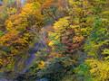 天人峡温泉へ紅葉を眺めにやってきました_2013年10月14日
