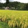 「JPF東日本大震災被災者支援:福島県川内村に見る日本の課題への取り組み」