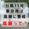 台風19号は東京湾で高潮の警戒が必要です~高潮ハザードマップを確認&万が一の浸水に備えてできること