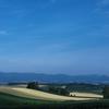 美瑛の丘の麦畑