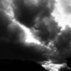 OLYMPUSのコンデジ 「XZ-10」で2017年2月27日までに撮影した写真を紹介します。コブシをモノクロとカラーで