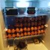 減量や健康について勉強したら冷蔵庫がこうなった