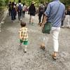 【子連れマタ旅】京都(2)金閣寺(鹿苑寺)&嵐山ー高雄パークウェイへ。低予算で幼児と楽しむ!