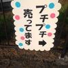 【高崎】プチプチが自販機で買える時代!プチプチ自販機