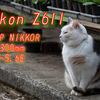 Nikon Z6ii & NIKKOR AF-P 70-300mF4.5-5.6E 作例パート2