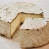 その364 #45 【フランス中央部のチーズ】④