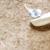 【ここすけの日常】セキセイインコvs紙皿編【budgerigar】