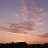 夕陽雲&今日の独り言