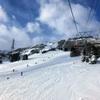 JALマイルとプリンスポイントを駆使した 北海道 富良野スキー場3泊4日の旅💖