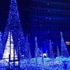 【Caretta Illumination 2016 】カレッタ汐留のイルミネーション!