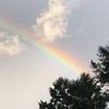 虹にお約束