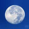 朝に没する不知夜月(月齢15.660)