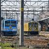 2021『びわこ京阪奈』HM <Ⅴ> 列車交換を米原方から-半リベンジの日 (近江鉄道:2021.3/27)